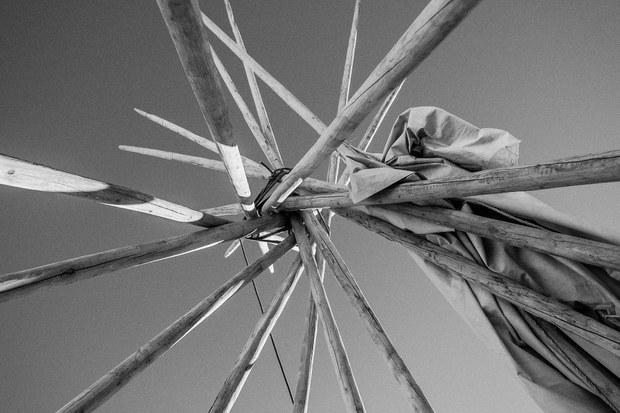 Postes de un tipi (o casa tradicional). Cannon Ball, Dakota del Norte, noviembre, 2016. Foto: Josué Rivas