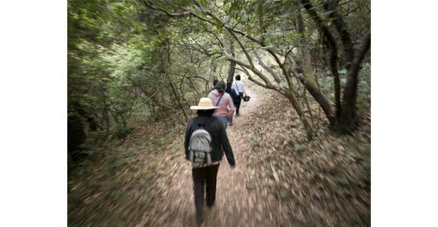 Peregrinación a Tlayacapan, Amatlán, Morelos. Foto: Elir Negri Lavín