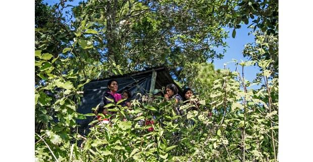 Refugiados en el monte, Aldama, Chiapas