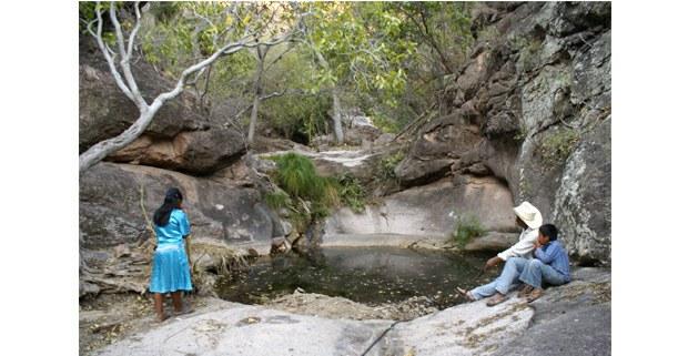 Ojo de agua en Barícora, Sonora. Foto: Melissa Valenzuela