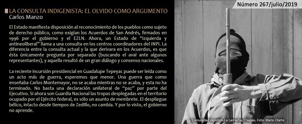 LA CONSULTA INDIGENISTA EL OLVIDO COMO ARGUMENTO / 267