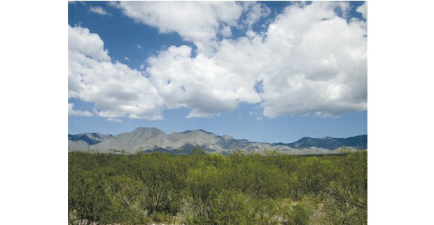 La Sierra de Catorce, San Luis Potosí. Foto: Ojarasca