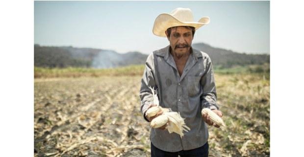 La lucha por la tierra en los campos de Ayala, Morelos. Foto: Miguel Tovar
