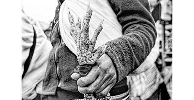 Mano a mano, Chiapas. Foto: Mario OIarte