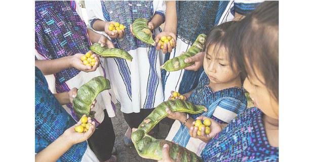 Alimentos de los Altos de Chiapas. Foto: Maruch Sántiz Gómez