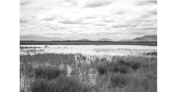 Regreso solemne del lago de Texcoco, 2021. Foto: Mario Olarte